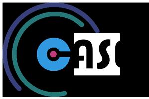 ICASEC_Logo_300x200